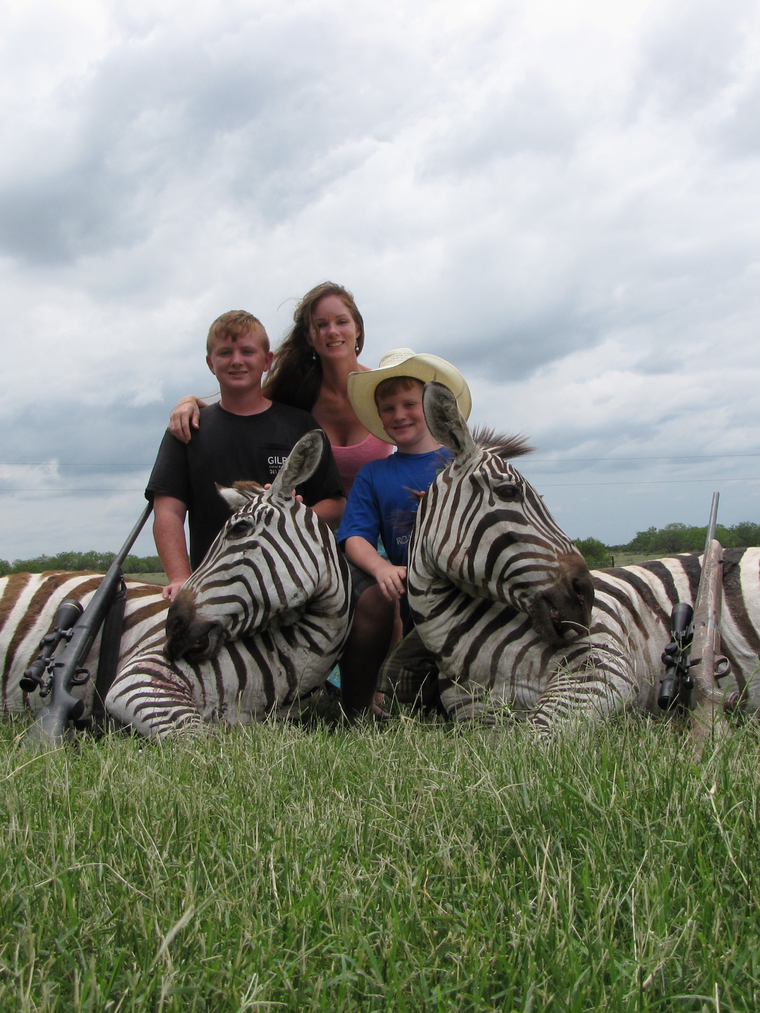 Zebra Hunting in Texas