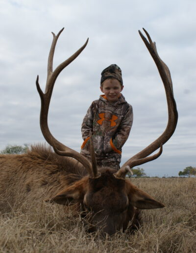 Elk Hunt TX