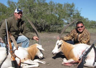 TX Oryx Hunts