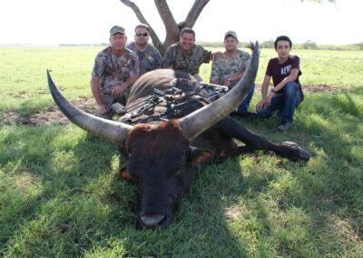 TX Watusi Hunt