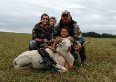 Texas Dall Sheep Hunt in TX