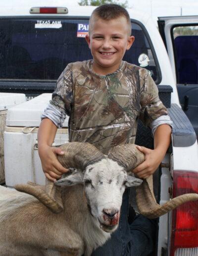 Texas Dall Sheep Hunt 1