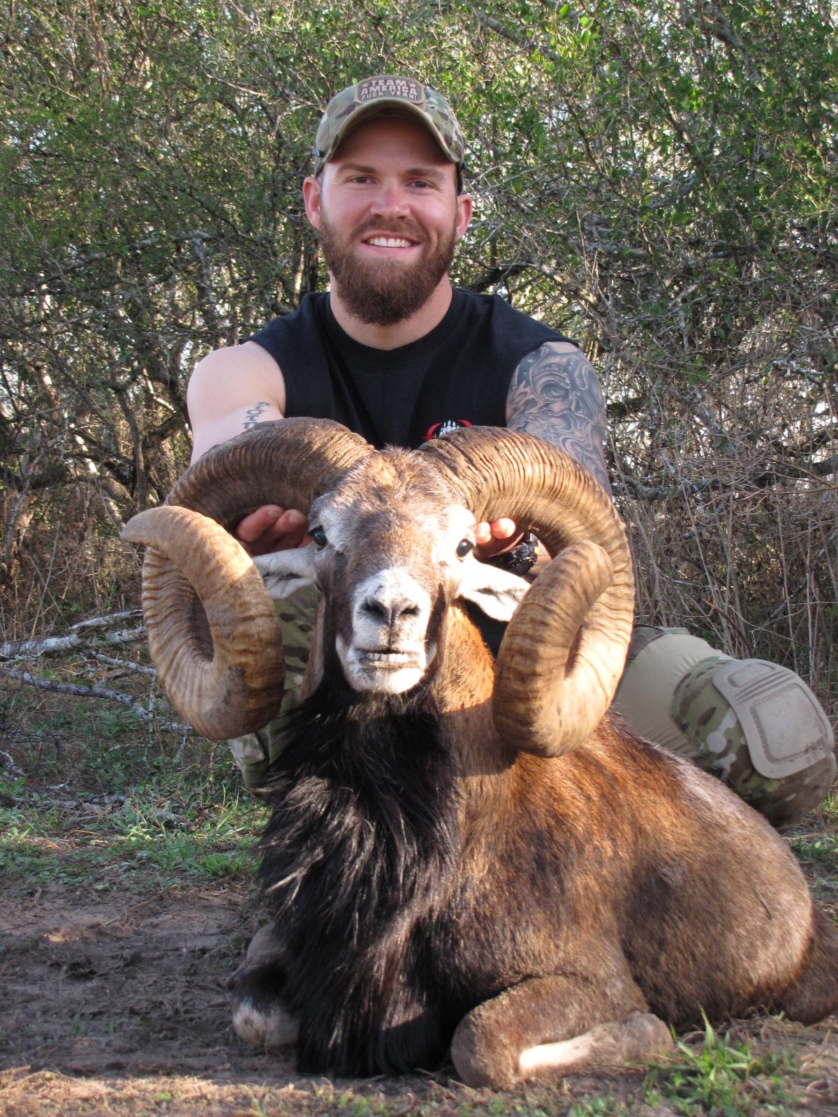 Mouflon Sheep Hunting in Texas