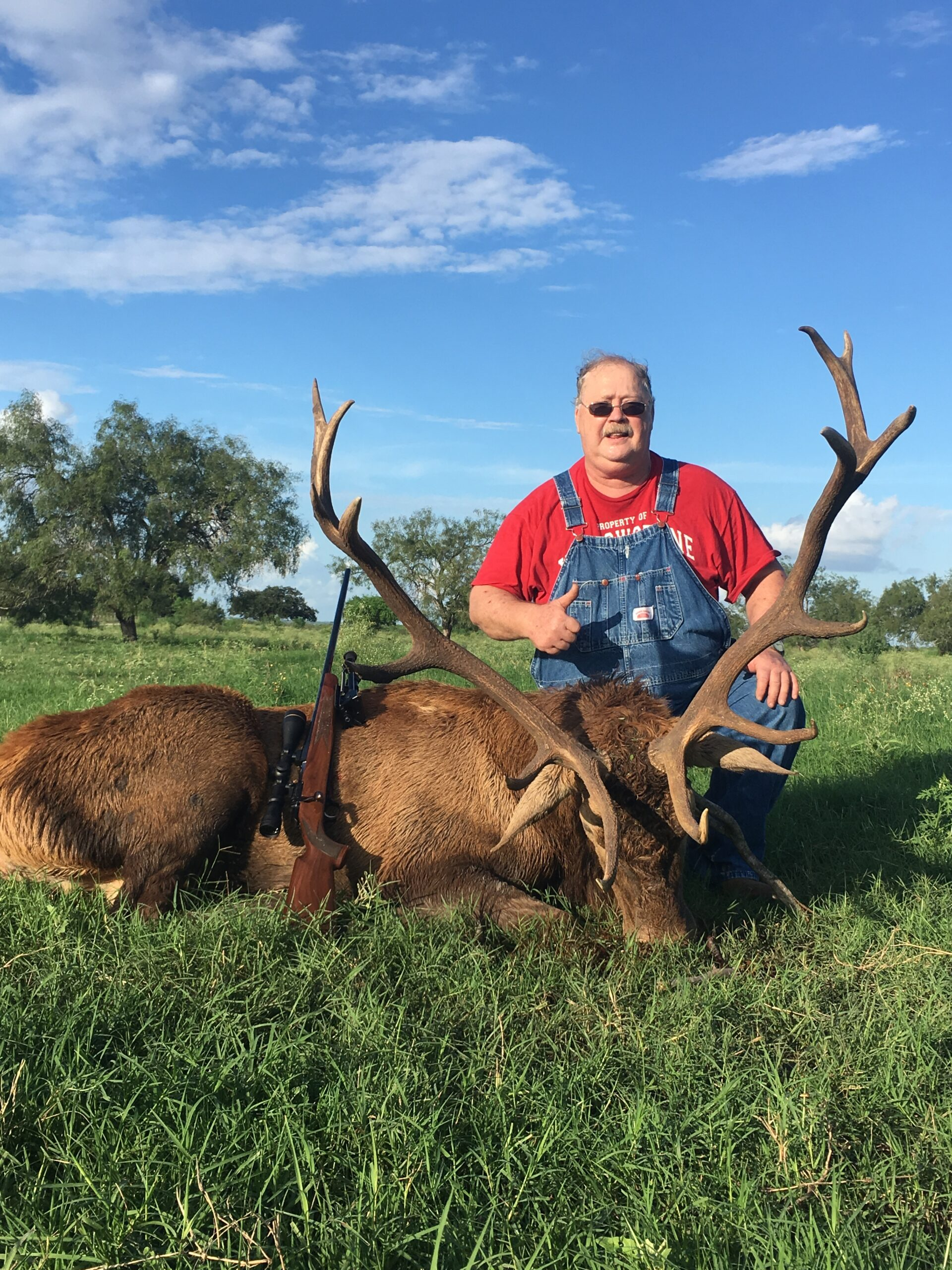 Trophy Red Stag Hunting