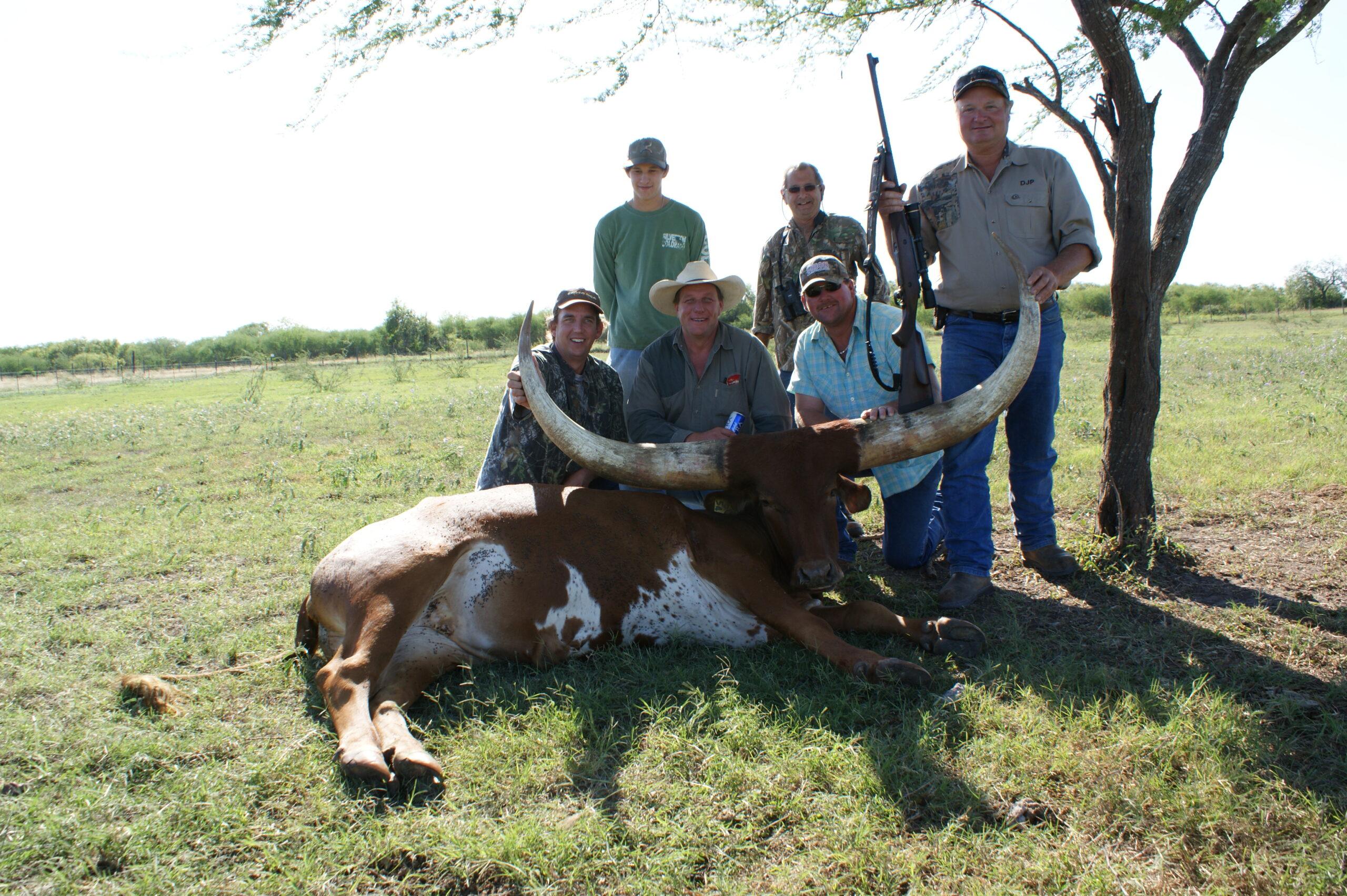 Texas Watusi Hunting