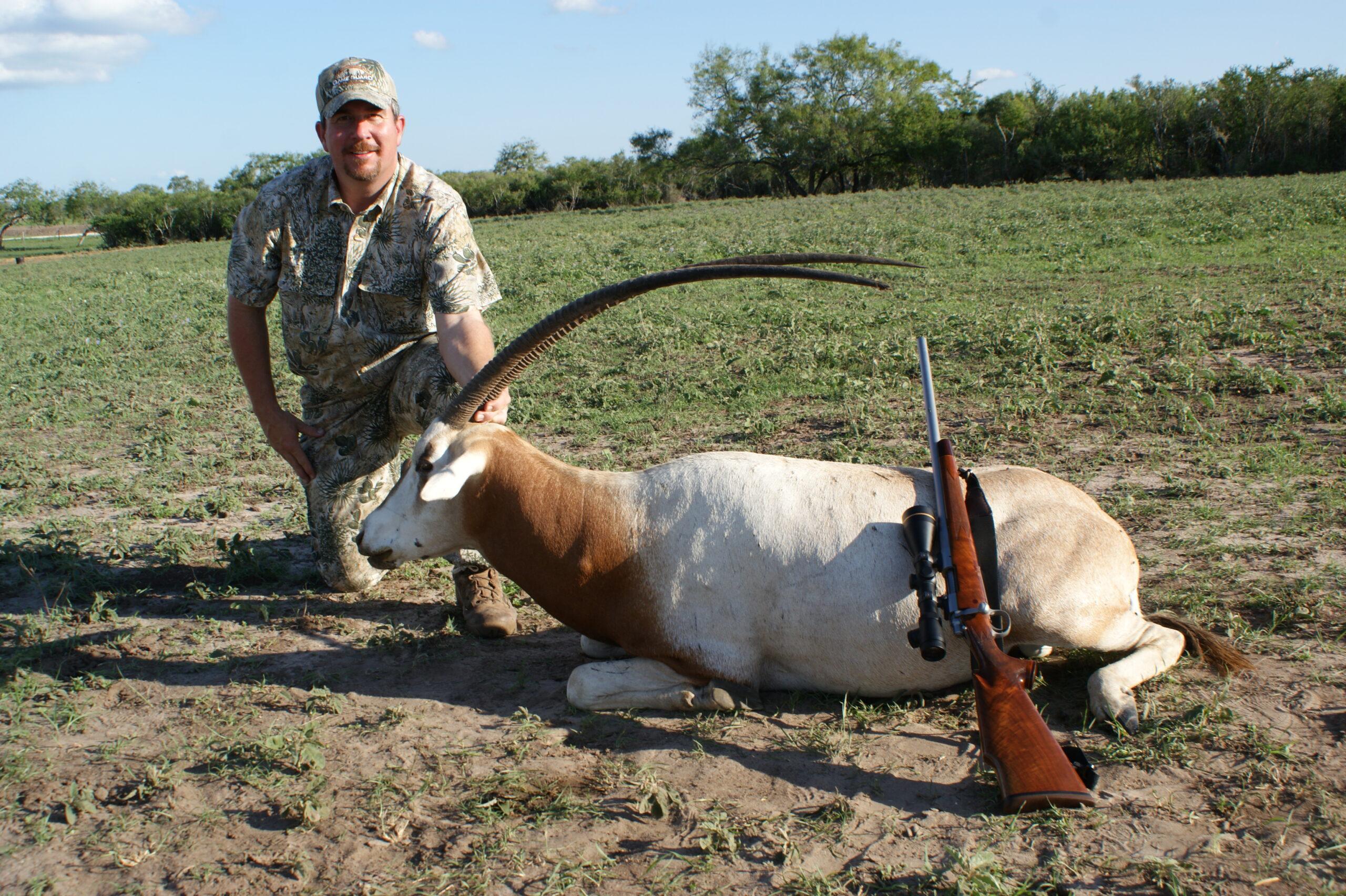 Trophy Scimitar Horned Oryx Hunting
