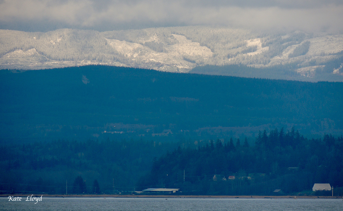 After being socked in all day I finally caught sight of new snow across the bay.