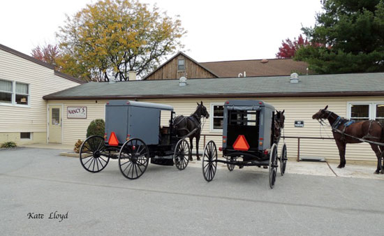 Nancy's Notions is a fun place to see where the Amish shop in Lancaster County, PA.