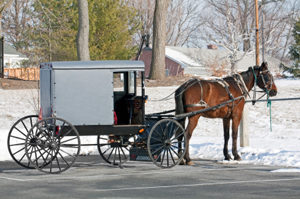 cold Amish winter