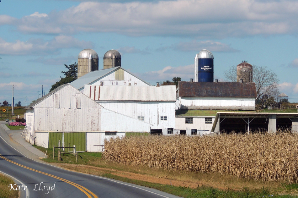 The Big Apple or Lancaster County?