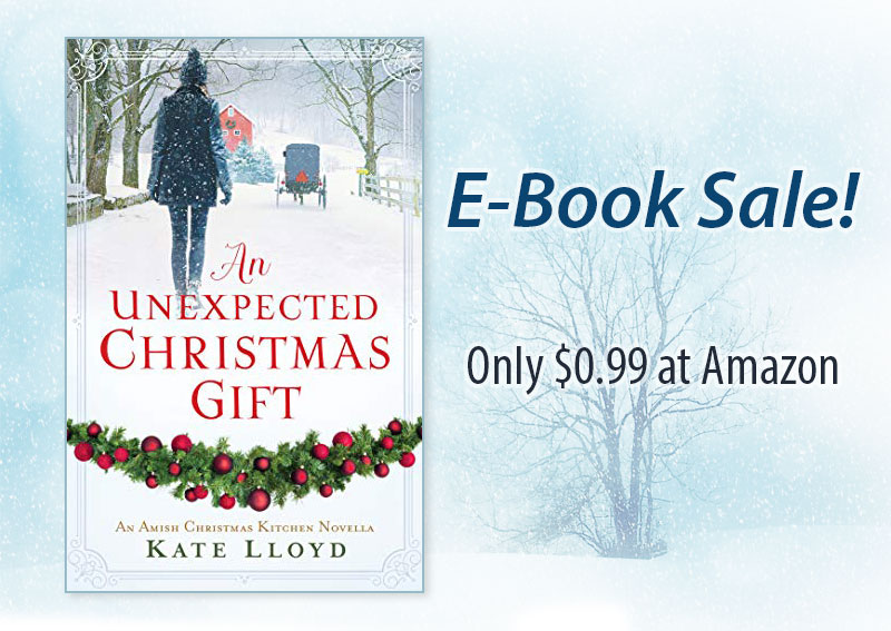 An Unexpected Christmas Gift by Kate Lloyd is on sale