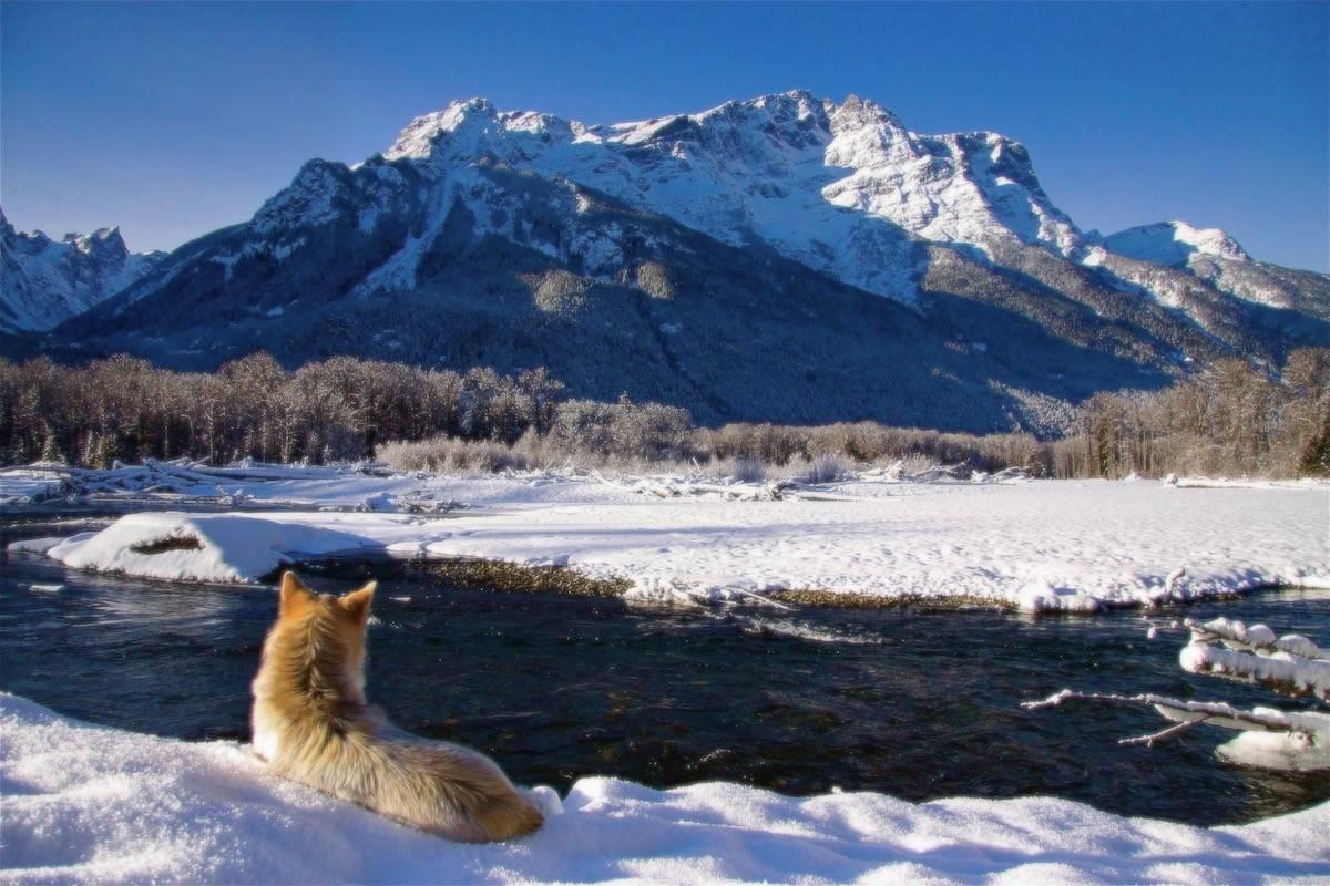 winter hike adventures Bella Coola