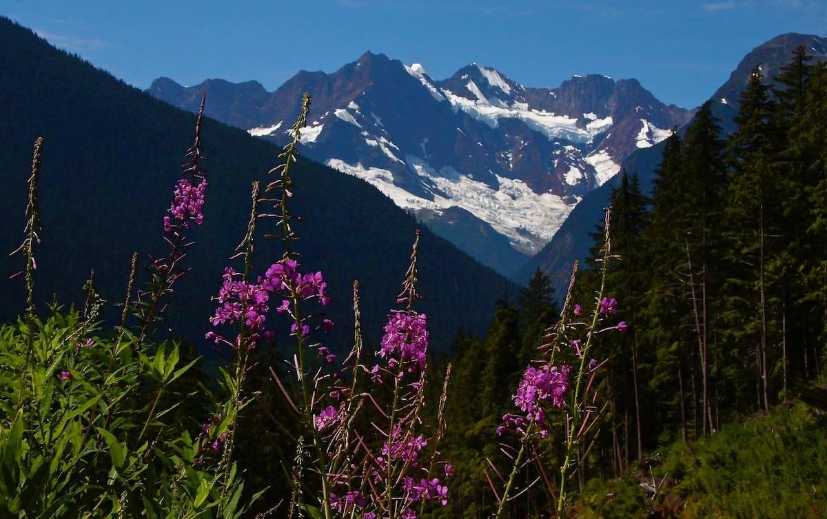 Blue Jay Lake Trail alpine hike Bella Coola