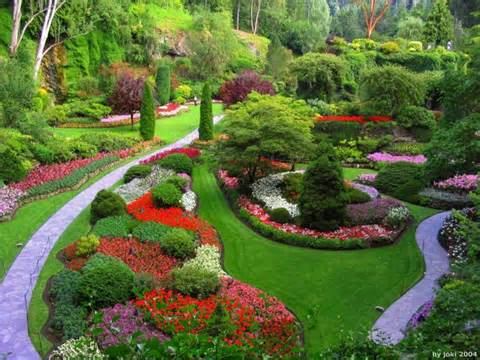 Tips for the Perfect Garden