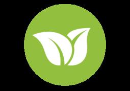 foliage-expertise1.