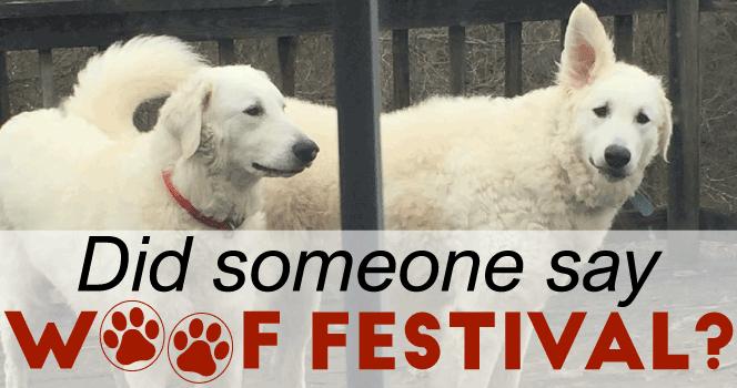 Woof Festival