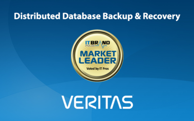 2019 Storage Leaders: Distributed Database Backup & Recovery