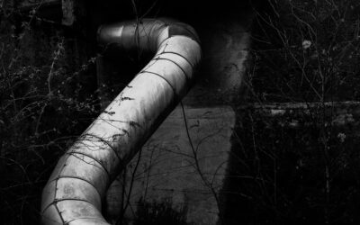 3 Reasons Your Sewer Pipes Clog in Summer