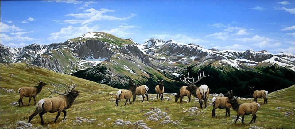 Mountain_Majesty