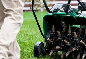 Why it's Important For Turf Health To Aerate Your Lawn