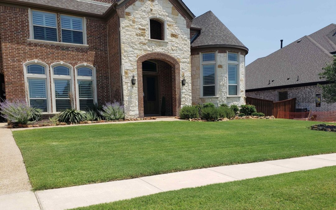 Winter Treatments for Your Lawn