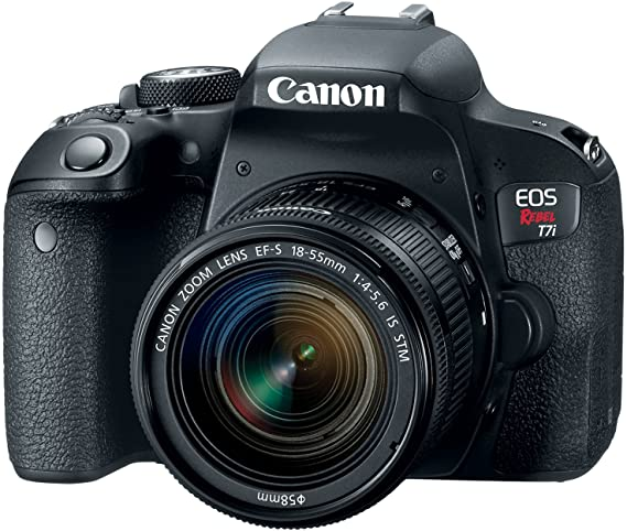 Another solid camera Canon EOS REBEL T7i for taking photos of your pet and especially dog photography