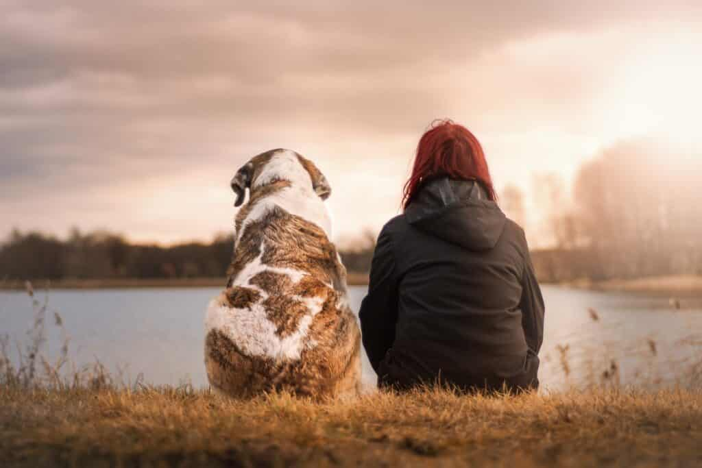 Photo of girl and a dog taken with best camera for dog photography