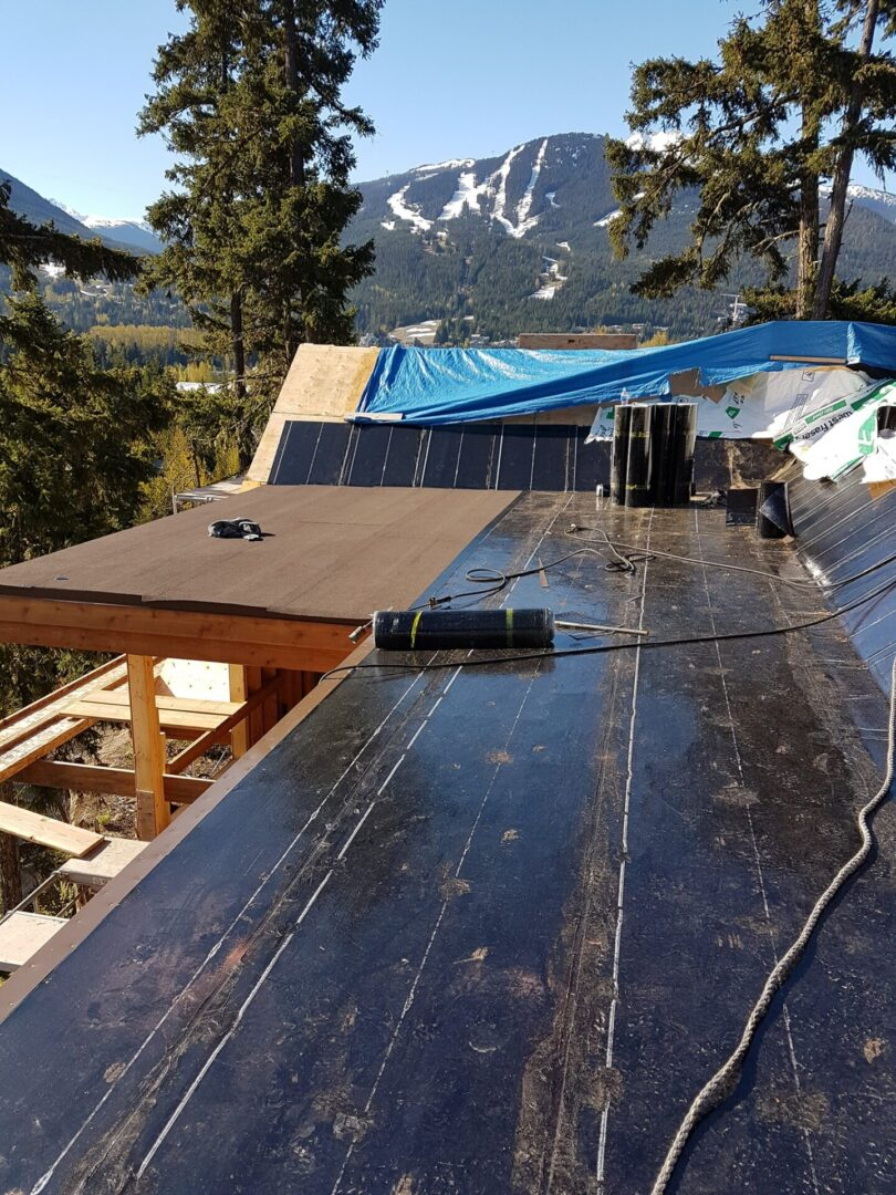 Roofing Companies in Parksville
