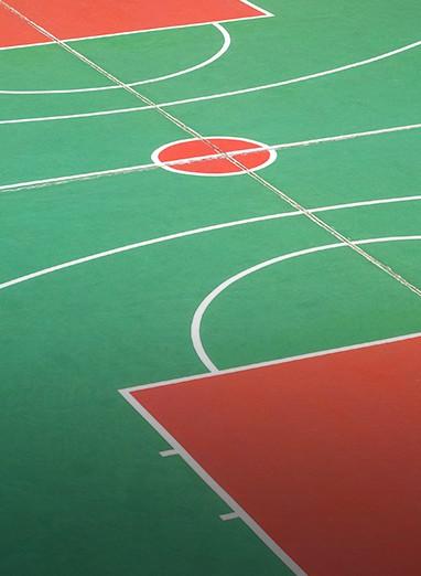 multipurpose sports courts