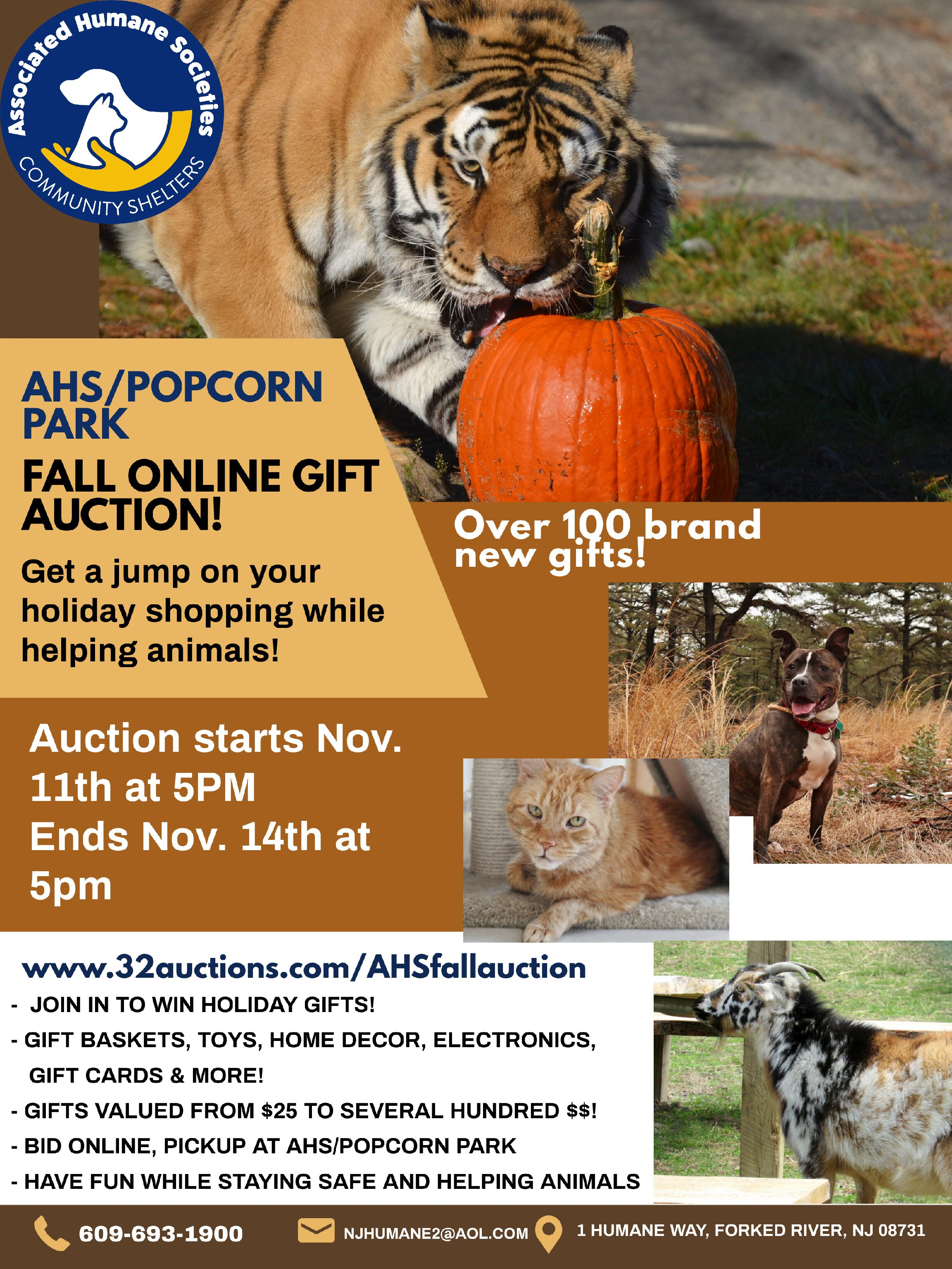 Fall Gift Auction