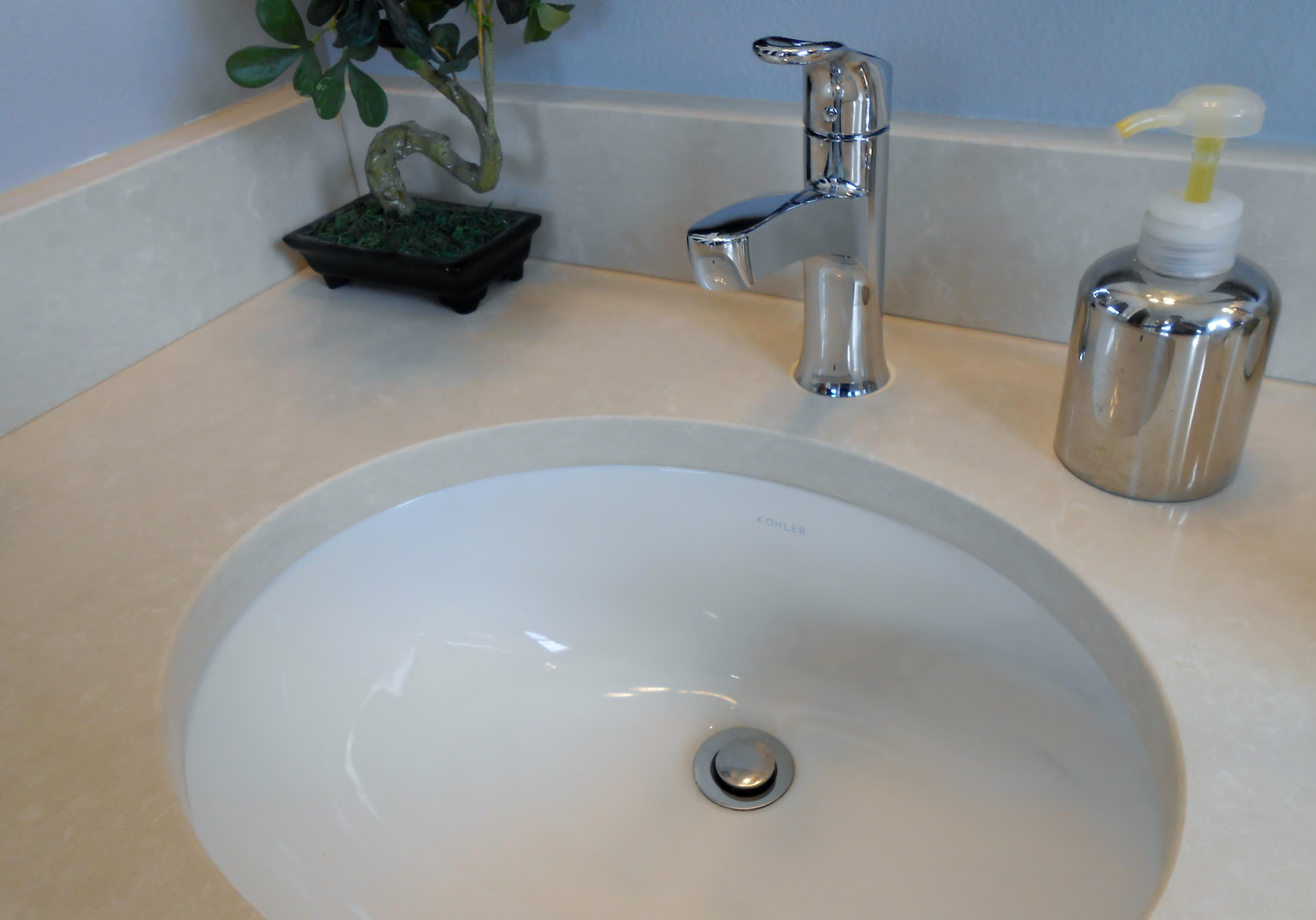 chrome plumbing fixture and undermount sink