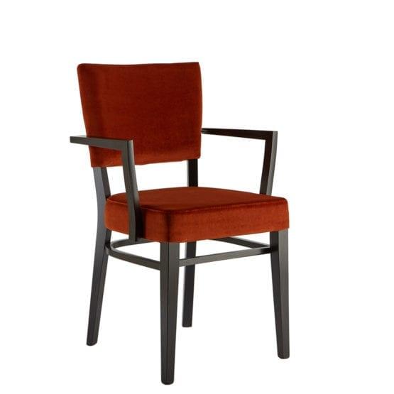 Aceray #300-01D armchair