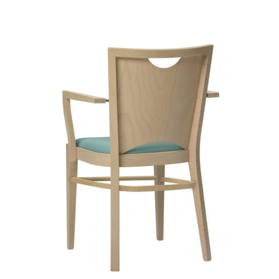 Aceray #100-12 armchair back view
