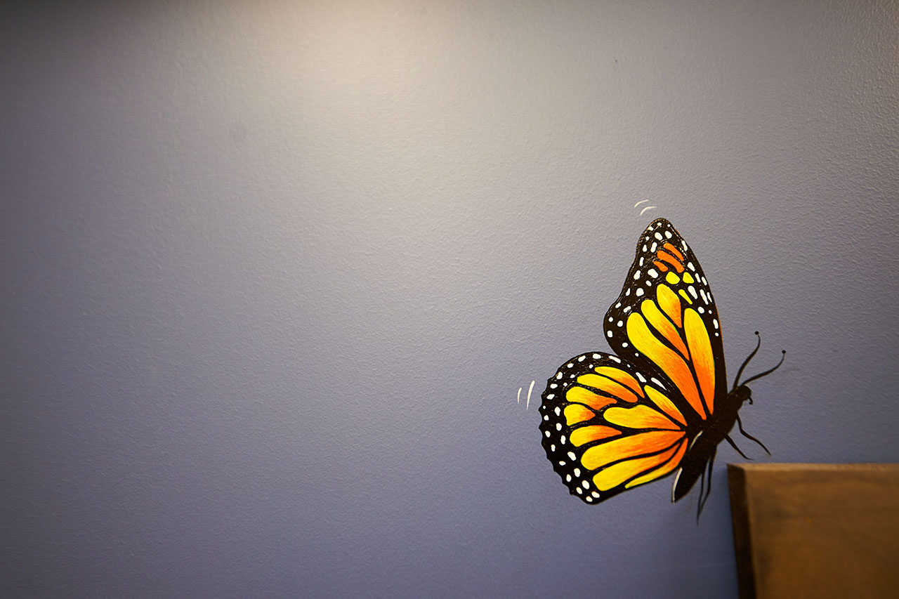 Painted Butterfly on the Wall