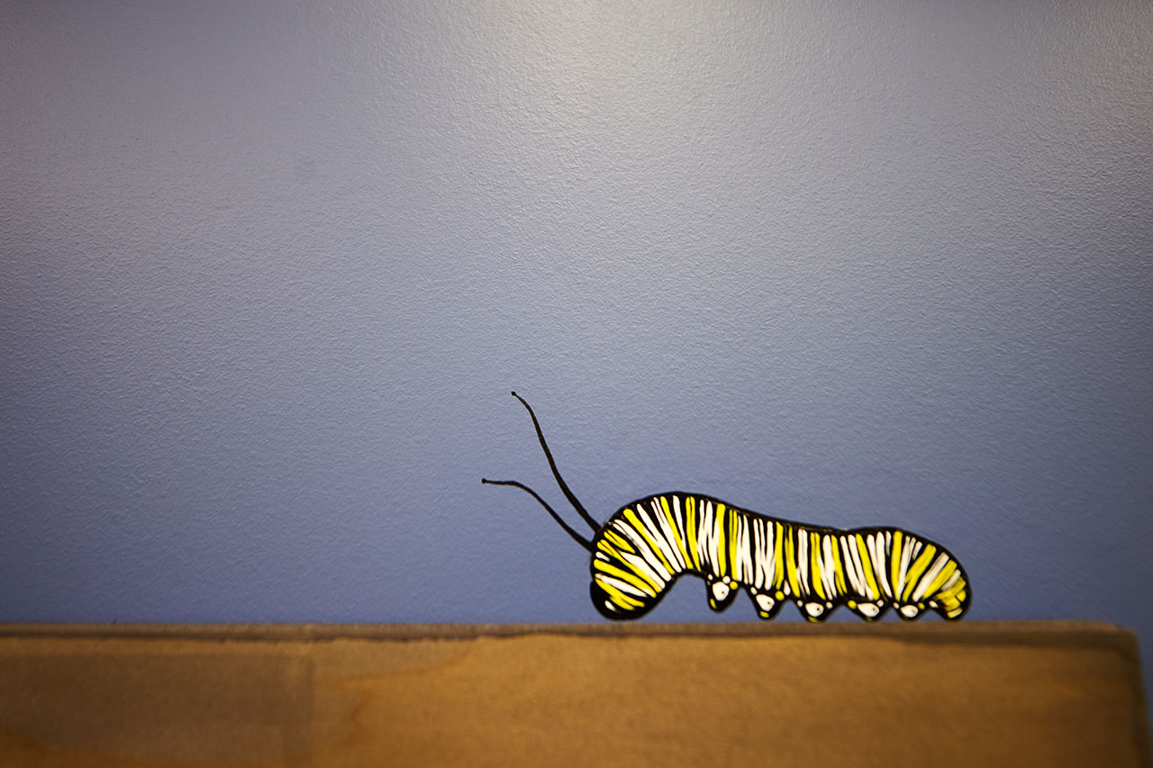 Caterpillar on Wall Painted Bright