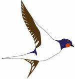nyenganyenga - swallow