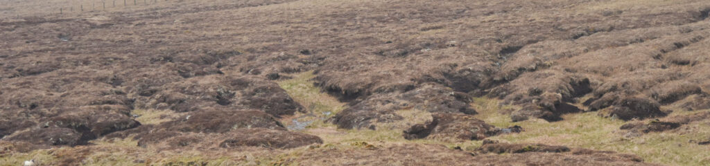 Peat land in the North Pennines