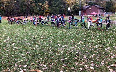 MTA Cross Country Championships