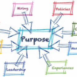 How To Define & Articulate Your Company's Purpose