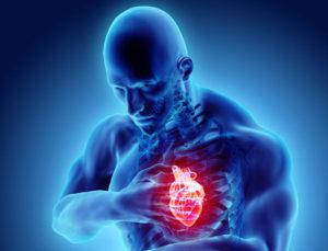 cardiology billing guidelines