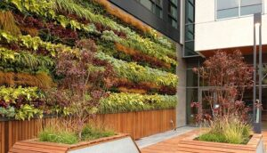 Rich Miller Landscape Living Wall