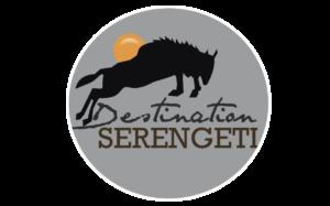 Destination Serengeti Safaris & Tours