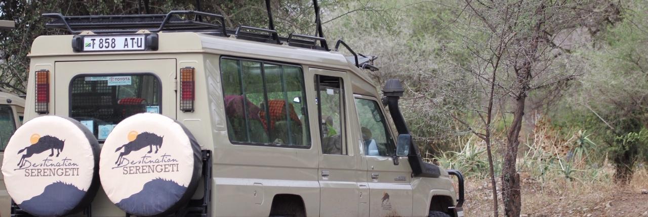 Destination Serengeti safari vehicle