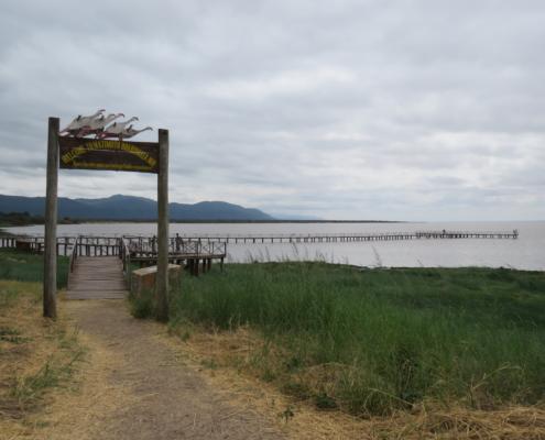 Majimoto Boardwalk (Lake Manyara)