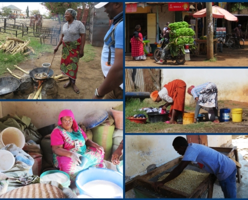 scenes from daily life at Mto Wa Mbu (women doing laundry, man carrying huge load of bananas on bicycle, etc)