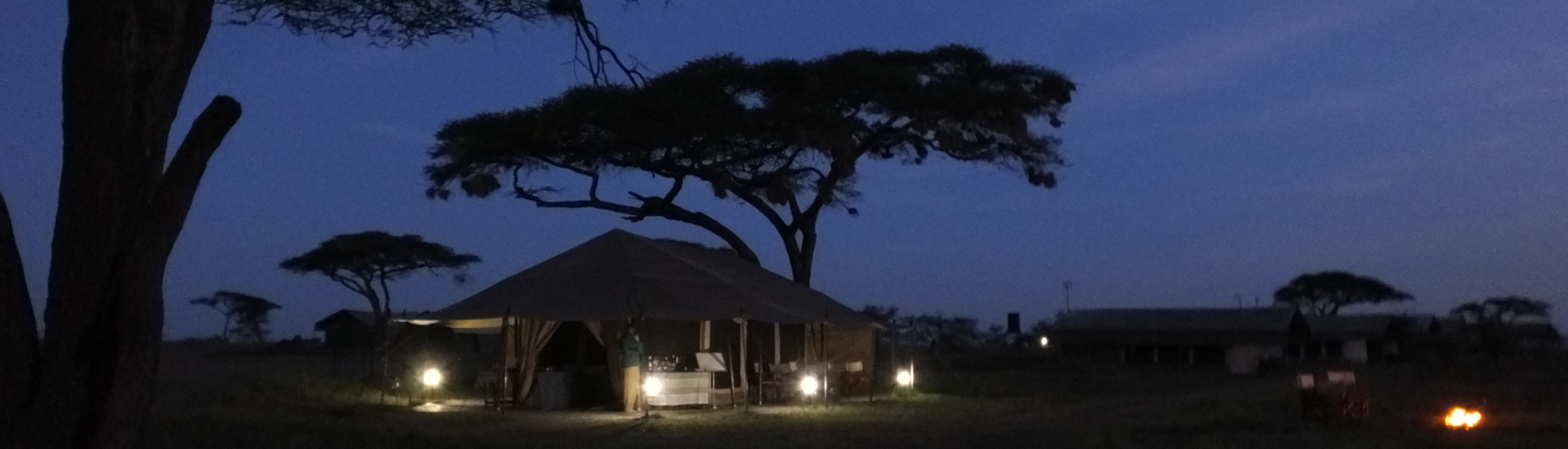 Serengeti mobile camp tents at night with lights