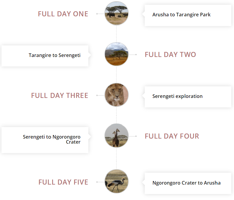 details of the safari itinerary
