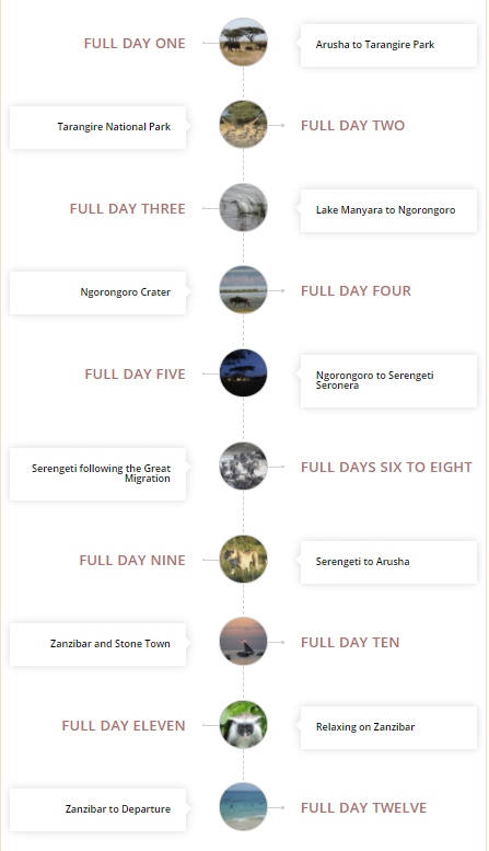 details of the safari itinerary following the great migration in the Serengeti and then going to Zanzibar