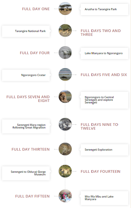 details of the safari itinerary lets you see all the parks and highlights of Northern Tanzania