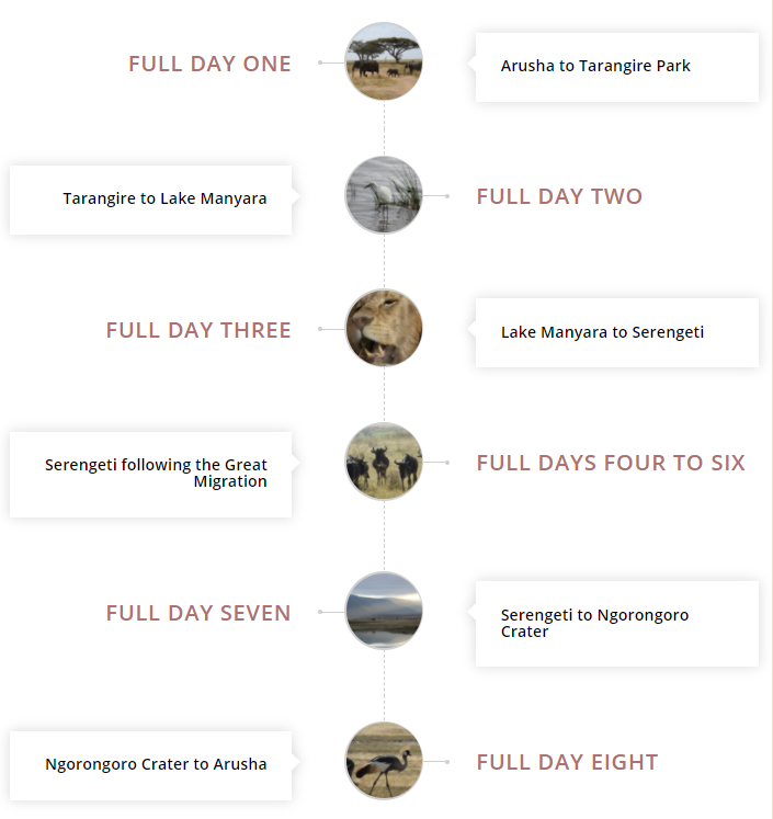 details of the safari itinerary following the great migration